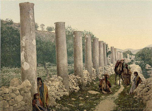 [The colonnade, Samaria, Holy Land]