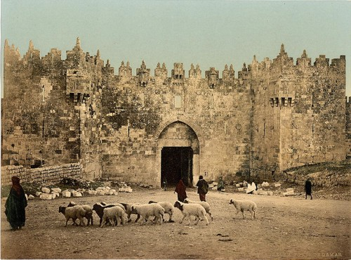 [The Damascus Gate, Jerusalem, Holy Land]