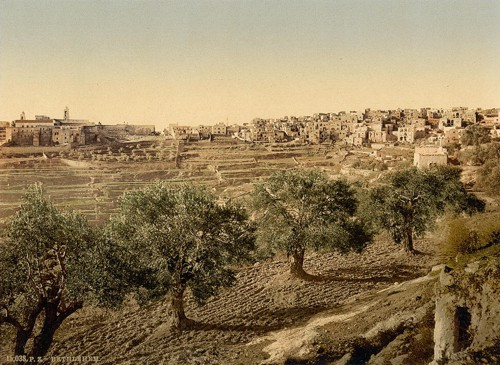 [General view of the well of David, Bethlehem, Holy Land, (i.e., West Bank)]