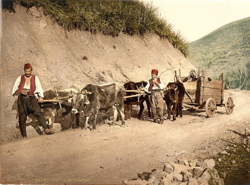 [Peasant wagon, Bosnia, Austro-Hungary]